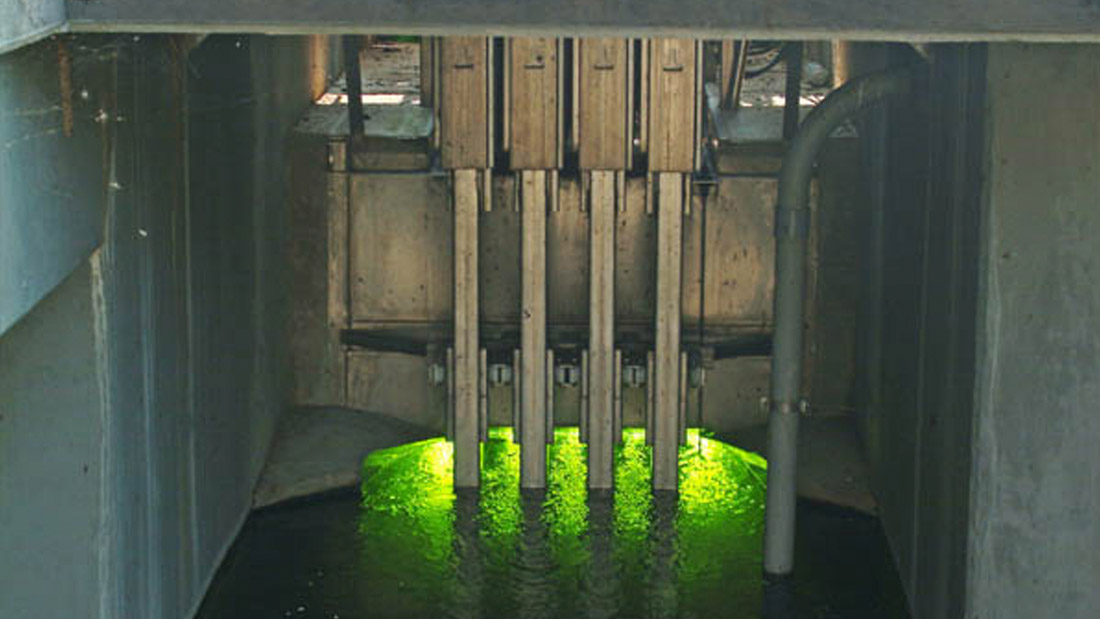 Triangle Wastewater Treatment Plant